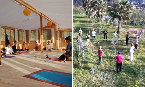 the-vegan-lodge-yoga